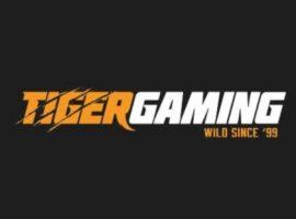 TigerGaming провел выплаты для игроков пострадавших от ботов